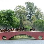 puente viejo actual