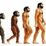 origen del hombre