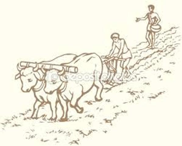 3 agro antiguo 1