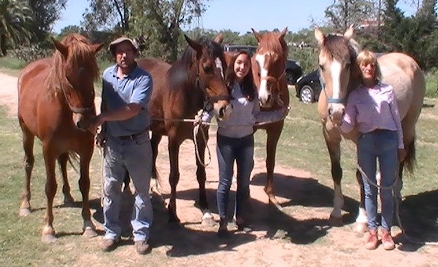 herradores caballos